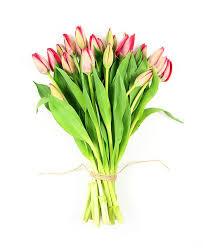 Flowers For Mum - flowers for mum orders flowers u0026 gifts online for mum u2013 flower haul