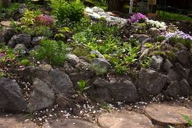 landscaping with rocks plants landscaping alpine hill hill