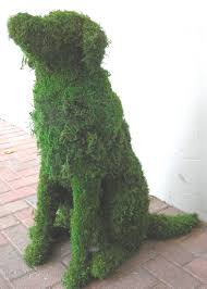 Bunny Topiary Frame Custom Dog Topiaries Gardens Pinterest Topiary Dog And Gardens