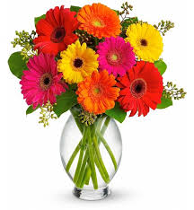 gerbera bouquet gerbera brights bouquet flower bouquets radiant and