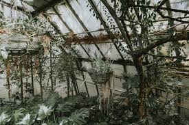 Backyard Greenhouse Winter Free Images Tree Branch Snow Winter House Flower Weather