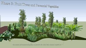 food forest swale design youtube