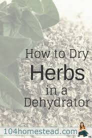 Herbs Indoors How To Dry Herbs Easily With A Dehydrator