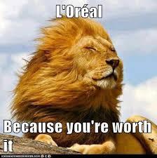 Lion Meme - lion because you re worth it know your meme