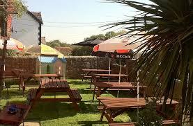 Backyard Beer Garden - the three oaks pub