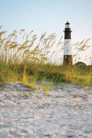 native plants grow on the sand dunes at this beach stock photo the south u0027s best beaches southern living