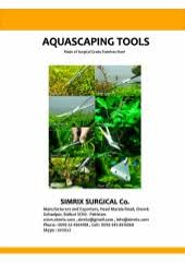 Aquascaping Guide Complete Guide To Aquascaping Style