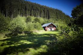 forest holidays a collection of stunning luxury log cabins
