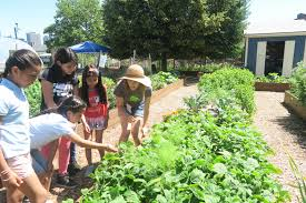 Urban Vegetable Garden by Urban Farming Inhabitat Green Design Innovation Architecture