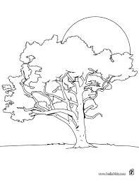 Pine Tree Coloring Pages Hellokids Com Tree Coloring Pages