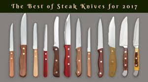 Who Makes The Best Kitchen Knives by The Best Steak Knives For Your Kitchen Top 5 Best Products