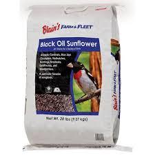blain u0027s farm u0026 fleet black oil sunflower seed