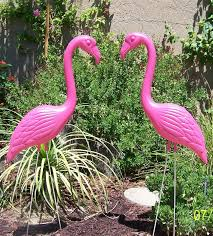 best 25 plastic pink flamingos ideas on pink