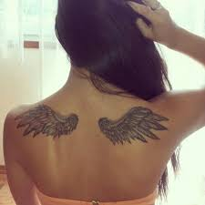 collection of 25 small wings on back