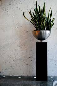 184 best interior plants and plant design images on pinterest