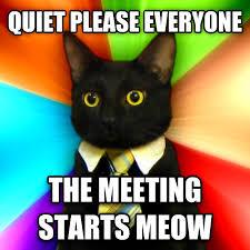 Business Meeting Meme - livememe com business cat