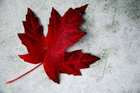 the history of the canadian maple leaf