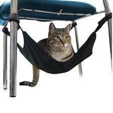 cat window perch ebay