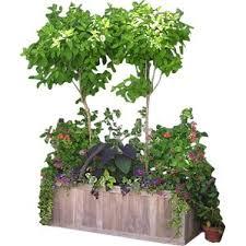 planter u0026 flower boxes you u0027ll love wayfair