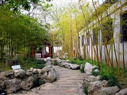 Bamboo Garden Design With Bamboo In The Garden And Stone In The Side As A Fence