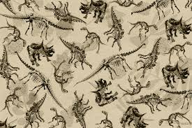 dinosaur skeleton montage wallpaper natural history museum dinosaur skeleton montage antique wall mural photo wallpaper