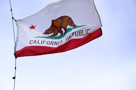 California Flag Horse Drawn Grizzly Bear California Flag Pencil And In Color Drawn