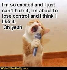 Funny Karaoke Meme - funny pictures weirdnutdaily cat karaoke