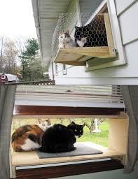 Window Planters Indoor by Cat Window Box 001 Simple Diy Cat Window And Indoor