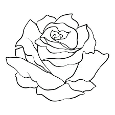 easy outlines rose outlines vodaci info