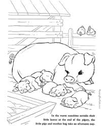 farm animal coloring sheets pictures