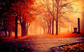 cute fall background wallpaper fall season wallpapers the wallpaper