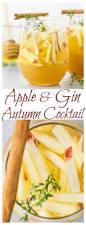 best 25 apple gin recipe ideas on pinterest