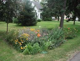 rain garden landscape ideas madison wi proscapes llc
