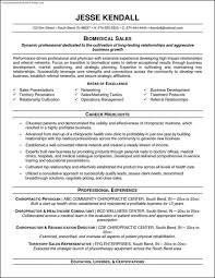 Free Functional Resume Templates Functional Resume Templates Free Luxury Template 8 Saneme