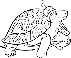 free printable st patrick u0027s day turtle coloring page for kids