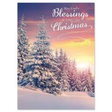 tree farm nonpersonalized christmas cards current catalog