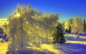 And New Year Holidays In The Sun Winter Splendid Light Sun Earth New Year Winter Holidays