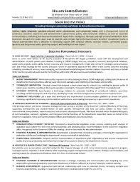 Sample Executive Resumes by 28 Senior Executive Resume Template Sales Resume Template