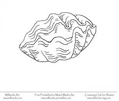 seashell coloring page 160943 sea shell coloring page coloring home