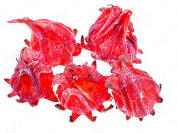 dried hibiscus flowers dried hibiscus flowers stock photo vvoennyy 27806051