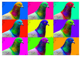 Color by Birds Of A Different Color Three Major Genes Set Feather Hue In