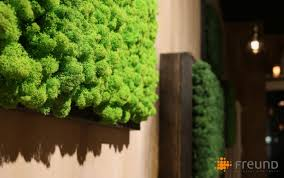 indoor vertical garden moss modular panel preserved plant