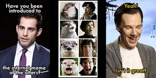 Benedict Cumberbatch Otter Meme - benedict cumberbatch and the otter memes i really feel him as a cat