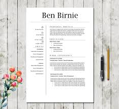 Professional Cv Template Executive Resume Template Resume Template For Word Cover