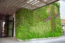 portfolio greenstreet greenwalls u2013 living walls greenwalls and