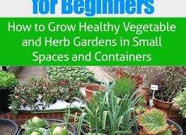 101 best a beginner u0027s guide to container vegetable gardening dunneiv