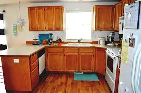 Contemporary U Shaped Kitchen Designs Tiny U Shaped Kitchen Video And Photos Madlonsbigbear Com