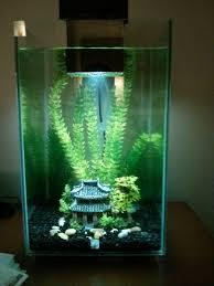 16 best aquarium decoration images on aquarium