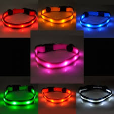 Light Up Dog Collar Light Up Dog Collar Free Delivery