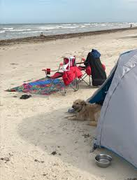 mustang island state park weather port aransas on mustang island to the dogs travel tails